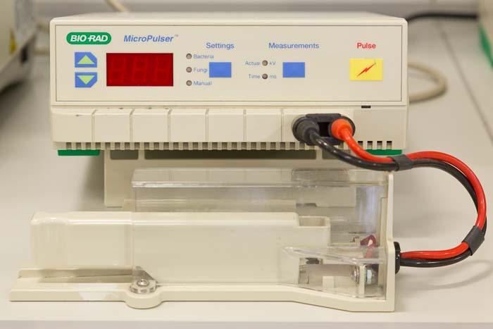 MicroPulser